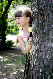 A menina na madeira   Foto de Stock