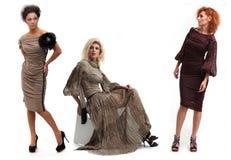 Menina na moda Imagens de Stock Royalty Free