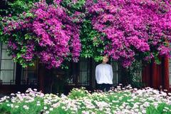 Menina nas flores de spectabilis da buganvília Foto de Stock Royalty Free