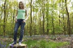 Menina nas madeiras Fotografia de Stock Royalty Free