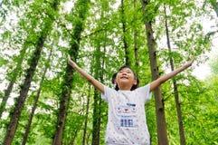A menina nas madeiras Fotografia de Stock Royalty Free