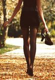A menina nas meias outono foto de stock royalty free