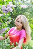 Menina no arbusto do lilac Fotografia de Stock