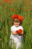 Menina no campo de trigo verde com papoilas Fotos de Stock Royalty Free
