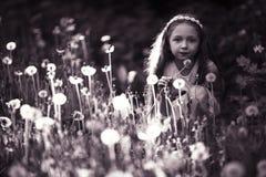 Menina no campo do dente-de-leão Imagens de Stock