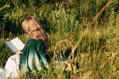 Menina no campo que lê um livro A menina que senta-se em uma grama, lendo um livro fotografia de stock