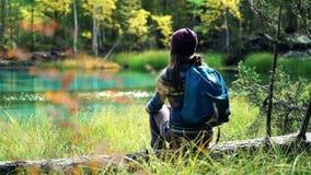 A menina no chapéu com trouxa senta-se em uma árvore caída pelo lago azul da montanha Vista traseira video estoque