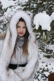 A menina no chapéu do lobo Imagem de Stock Royalty Free