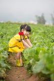 Menina no cozinha-jardim imagens de stock royalty free