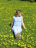 Menina no gramado do dente-de-leão Imagens de Stock Royalty Free