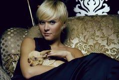 Menina no interior luxuoso com chihuahua Imagem de Stock