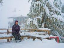 Menina no inverno Foto de Stock Royalty Free