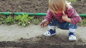 Menina no jardim vídeos de arquivo