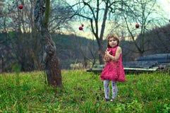 Menina no jardim da maçã Fotos de Stock