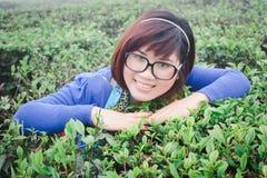 Menina no jardim de chá Foto de Stock Royalty Free