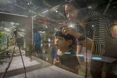 Menina no museu de ciência nacional Fotografia de Stock Royalty Free