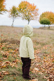 Menina no parque do outono pathway imagens de stock