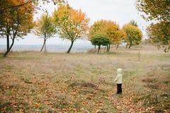 Menina no parque do outono pathway fotografia de stock