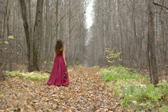 Menina no passeio vermelho do vestido Fotografia de Stock Royalty Free