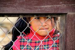 Menina no Peru Fotografia de Stock Royalty Free