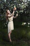 Menina no pomar de maçã Fotos de Stock