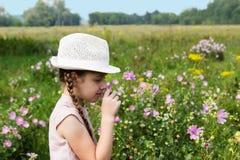 Menina no prado com flores Foto de Stock Royalty Free