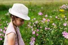 Menina no prado com flores Fotos de Stock Royalty Free