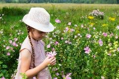 Menina no prado com flores Imagem de Stock
