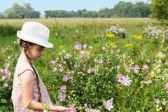 Menina no prado com flores Fotografia de Stock