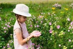 Menina no prado com flores Imagem de Stock Royalty Free