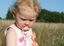 Menina no prado com teat foto de stock