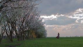 Menina no prado verde vídeos de arquivo