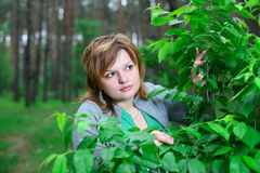 A menina no regaço da natureza Foto de Stock