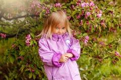 A menina no revestimento roxo na árvore de Apple de florescência Imagens de Stock