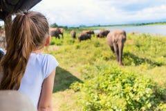 Menina no safari fotografia de stock
