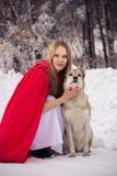 A menina no traje pouca capa de equitação vermelha com cão gosta de um lobo Imagens de Stock Royalty Free