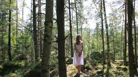 Menina no vestido branco que está no bosque do vidoeiro no dia ensolarado video estoque