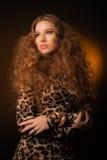 Menina no vestido do leopardo e em sapatas pretas no fundo marrom Foto de Stock Royalty Free
