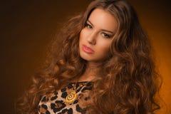 Menina no vestido do leopardo e em sapatas pretas no fundo marrom Imagem de Stock Royalty Free