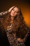 Menina no vestido do leopardo e em sapatas pretas no fundo marrom Imagem de Stock