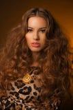 Menina no vestido do leopardo e em sapatas pretas no fundo marrom Fotografia de Stock