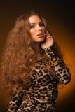 Menina no vestido do leopardo e em sapatas pretas no fundo marrom Imagens de Stock