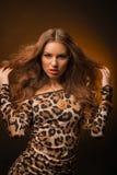 Menina no vestido do leopardo e em sapatas pretas no fundo marrom Imagens de Stock Royalty Free