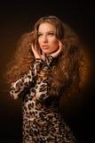 Menina no vestido do leopardo e em sapatas pretas no fundo marrom Fotos de Stock Royalty Free