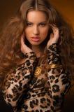 Menina no vestido do leopardo e em sapatas pretas no fundo marrom Foto de Stock