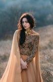 Menina no vestido dourado Imagem de Stock Royalty Free