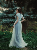 A menina no vestido transparente Imagens de Stock Royalty Free