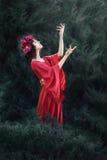 A menina no vestido vermelho. Fotos de Stock Royalty Free