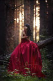 Menina no vestido vermelho na floresta Fotografia de Stock