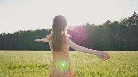 A menina nova bonita do russo com cabelo longo vai ao longo do campo de trigo Levanta seus braços e voltas, apreciar vídeos de arquivo
